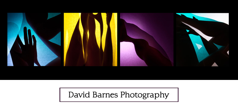 David Barnes Photography